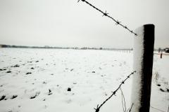 01 bew winter