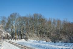 11 bew winter