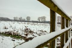 02 bew winter