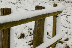03 bew winter