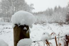 05 bew winter
