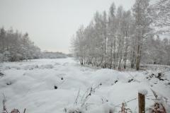 07 bew winter