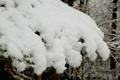 08 bew winter