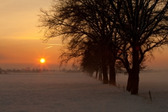 15 bew winter