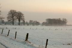 16 bew winter