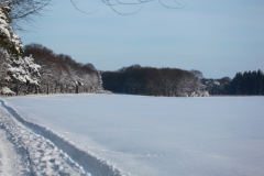 17 winter