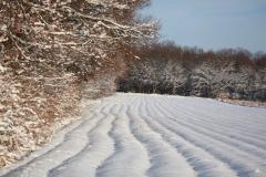 18 winter