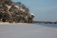 19 winter